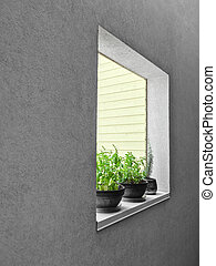Potted herbs on a window sill