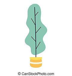 potted plant decoration on white background