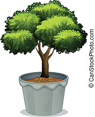 Potted Plant - Illustration of a single potted plant