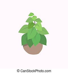 potted plant isolated on white background flat
