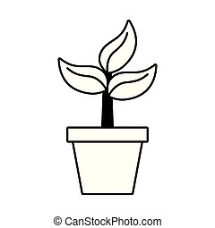 potted plant nature white background vector illustration