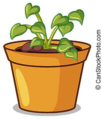 Potted plant on white background illustration