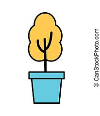 potted plant on white background