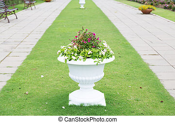 Potted plants white on the grass.