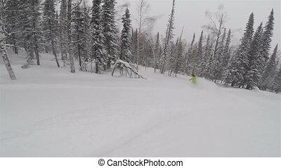 poudre, girl, promenades, snowboarder, neige
