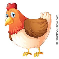 Images et illustrations de poule 53 687 illustrations de - Photos poules rigolotes ...