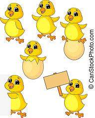 poulet, bébé, mignon, ensemble, dessin animé