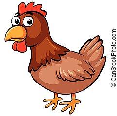 poulet, fond blanc