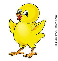 poulet, heureux