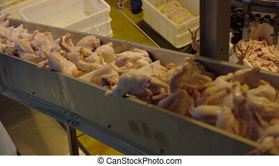 Poultry meat during production process