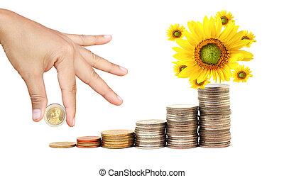 poupança, seu, aumento
