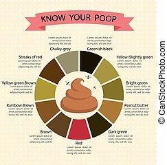 poupe, concept, couleur, tabouret, diagramme, sain,...