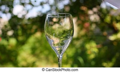 pour the glass with fresh water
