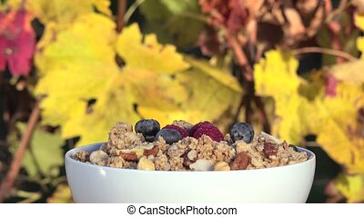poured red fruits on muesli - vine in autumn colors in the...