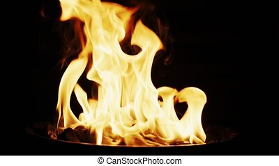 Pouring charcoal lighter fluid into barbecue grill fire. ...