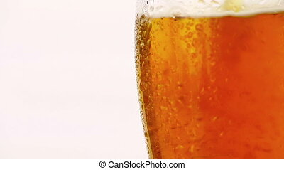 pouring fresh beer with foam into glass on white background