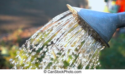 pouring water from watering can. Slow motion
