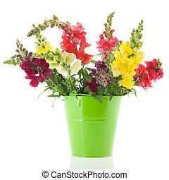 pourpre, dragon, fleurs, vase