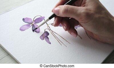 pourpre, femme, artiste, ombrager, délicatement, fleur