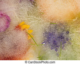 pourpre, fleurs oranges