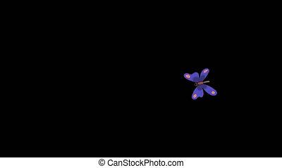 pourpre, mouches, papillon, alpha
