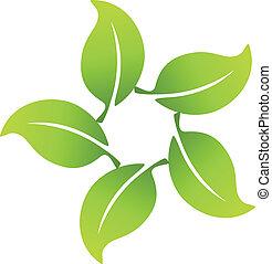 pousse feuilles, autour de, icône, application, logo
