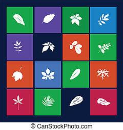 pousse feuilles, icônes