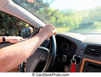 pousse, intérieur, voiture., conduite, homme