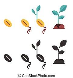 pousse, plante, croissance, graine, étapes