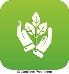 pousse, vecteur, vert, main, icône