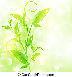 pousse, vert