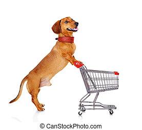 pousser, achats, teckel, charrette, chien