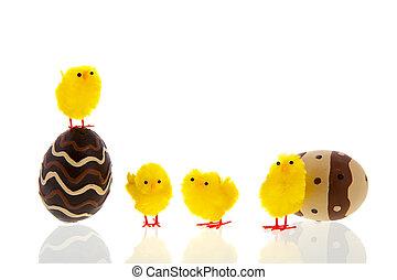 poussins, oeufs, chocolat