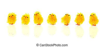 poussins, paques, jaune
