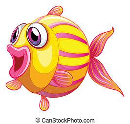 pouty, pez, colorido