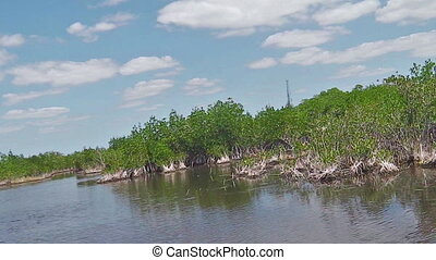 POV by Airboat - POV of the tour by hovercraft running...