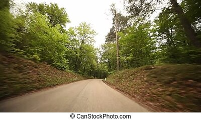 POV Driving In Forest - driving in a forest in south tyrol, ...