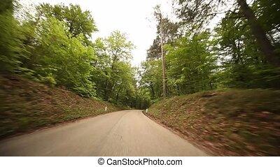 pov, forêt, conduite