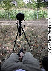 pov, fotógrafo, em, natureza, levando, timelapse, foto, ligado, pró, dslr, câmera, com, tripé