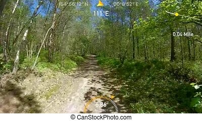 pov, lato, jeżdżenie na rowerze, las