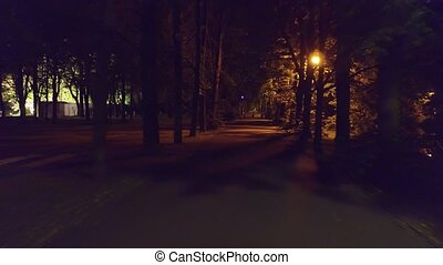 POV steadicam shot of a summer park alley at night.