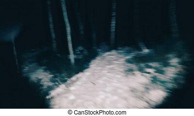 POV victim runs away from the maniac in the woods at night