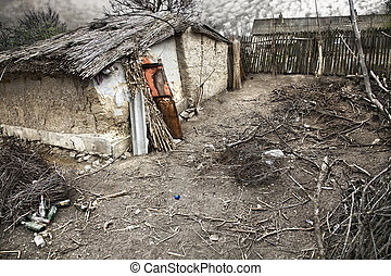 poverty - deserted house with many branches in the courtyard