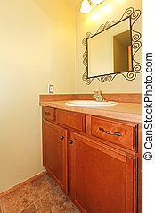 Powder room with sink and mirror