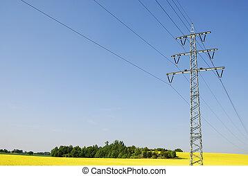 Power line through a rape field