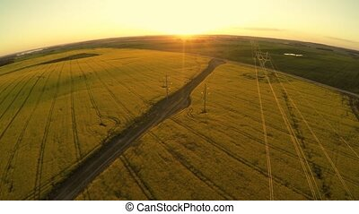 Power lines and agricultural field. Sunset - Power lines and...