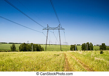 Power lines in a summer forest