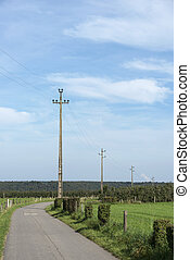power lines in nature