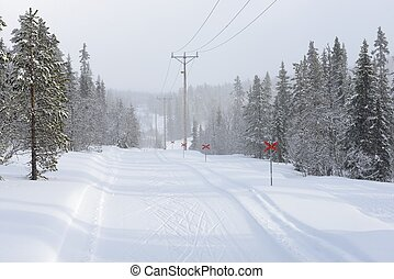 Power lines in winter landscape