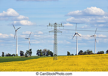 Power lines, wind turbines and a flowering canola field